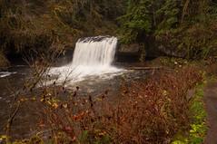 Upper Butte Creek Falls 20 (martinjones1946) Tags: martinjones landscape buttecreek creek buttecreekfalls waterscape water waterfall longexposure marioncounty oregon winter