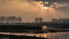 Here comes the sun (Wil Molenkamp) Tags: lingezegen goudenuurtje linge zonsondergang molenkamp sunset goldenhour
