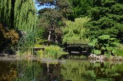 Ogród Botaniczny, Wrocław, Poland