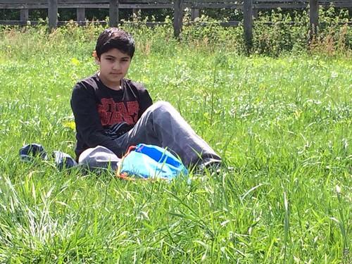 @ kinderboerderij Kiewit