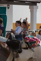 AE5D1034 (alonsoesparterofoto) Tags: caballo alma imagenes alonso rocio ermita bombo flamenca buey flauta gitana romeria campero botos tamboril bueyes rociero carriola simpecado tamborilero espartero rociera gibraleon sinpecado alonsoespartero