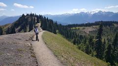 Beautiful Klahhane Ridge Trail