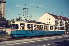 Die meisten Jahre wurden die M-Gelenkwagen dann auf der Linie 25 nach Grnwald eingesetzt. Gut gefllt verlsst der Tatzelwurm gerade die Haltestelle Kurzstrae (Sammlung: Freunde des Mnchner Trambahnmuseums e.V.) (Frederik Buchleitner) Tags: munich mnchen tram mg 102 streetcar p1 trambahn rathgeber hsm pwagen fmtm tatzelwurm strasenbahn wehmingen hannoverschesstrasenbahnmueum freundedesmnchnertrambahnmuseums mgelenkwagen mgwagen p1wagen