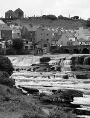 clare 007edit (barry.oshea) Tags: ireland sea white black water clare donkey ennistymon lehinch