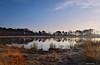 Rozenven (Mariannevanderwesten) Tags: rozenven roosendaal water nikon nature natuur reflection reflectie