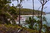 From the track (jack eastlake) Tags: photos stacked lens 1735mm d810 nikon pambula barmouth beach bluff track haycock point ben boyd national park walks forest eucalyptus holidays hikes bushwalking