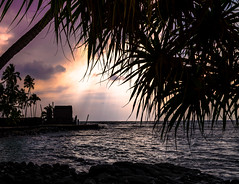 Pu'uhonua O Honaunau Park, Hawaii (Rick Vega) Tags: tropical water sand trees d7000 nikon sunset nationalpark bigisland hawaii
