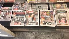 Good night Princess (dannydalypix) Tags: irishnewspapers princessleia newspapers restinpeace carriefisher