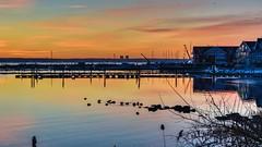 I'm Coming Back (Lojones13) Tags: marina outdoor water waterfront sunrise dawn bay docks bronx newyork sky reflection