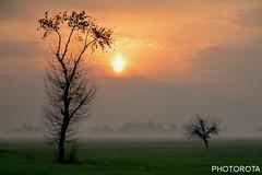 MORNNING 2017 (PHOTOROTA) Tags: abid photorota flickr pakistan punjab kamoke homeland mornning