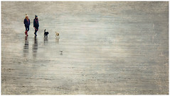A Stroll on Porthcawl Beach (tina777) Tags: stroll walking beach people women dog canine sand sea coast winter photoshop elements 13 texture porthcawl bridgend south wales seagull