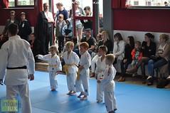 Judo-habay022