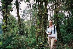 Jungle, Loja, Ecuador