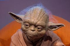 Master Yoda (Sebastian Niedlich (Grabthar)) Tags: sculpture berlin germany deutschland starwars nikon yoda nikkor 50mmf18d madametussauds waxfigure waxwork 2015 d90 july15 wachsfigur grabthar jul15 sebastianniedlich nikond90