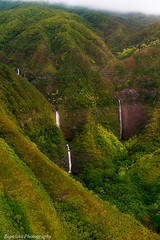 Finding Swimholes (Jared Ropelato) Tags: california wild west green art nature water beauty forest landscape hawaii waterfall rainforest unitedstates pacific outdoor vacaville conservation environmental cliffs waterfalls hawaiian environment wilderness lush conserve ropelato jaredropelato ropelatophotography