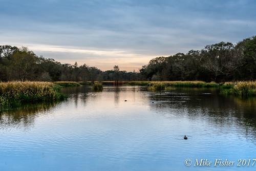 Creekfield Lake in January
