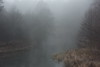 early morning (Mindaugas Buivydas) Tags: lietuva lithuania color fog mist winter december river calm morning morninglight sadnature šyša forest tree trees favoriteplaces home mindaugasbuivydas blue