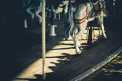 2017010 (gwagwa) Tags: f095 mitakon 50mm merrygoround horse amusement park white shadow bokeh