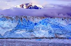 In response to Global Warming (mark.paradox) Tags: usa alaska glacier hubbard colors blue travel landscape water ice nature canada beauty impression yakutat bay сша аляска хаббард ледник лед ода пейзвж прирда горы цвет красота путешествия wow
