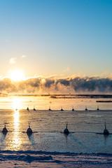 Smoke on the water in Helsinki, Jan 5th (Czzz) Tags: seasmoke sea finland helsinki mist winter sky sun sunrise snow ice cold freezing water clouds pier