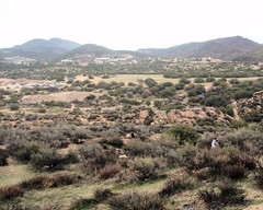 015 The Distant Start (saschmitz_earthlink_net) Tags: 2017 california orienteering vasquezrocks aguadulce losangelescounty laoc losangelesorienteeringclub