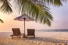 Soft beach sand (icemanphotos) Tags: palm seascape sunbeds loungers holiday travel sky
