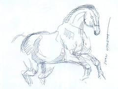 caballo a lapicero (ivanutrera) Tags: caballoalapicero caballo draw dibujo drawing dibujoalapicero boligrafo animal cuadrupedo sketch sketching pen lapicero trazo dibujoaboligrafo