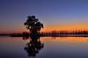 Delta Ebro 7 Diciembre 2016 (carlosjarnes) Tags: delta atardecer