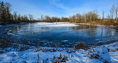 Kanaka Creek Regional Park (SonjaPetersonPh♡tography) Tags: mapleridge fraservalley britishcolumbia canada 2017 winter fraserriver nikond5200 nikon riverfront kanakacreek park bcparks regionalpark snow ice walk paths trail landscapes creek river marsh marshland frozenice scenic