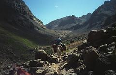 toubkal (flexderfuchs) Tags: morocco porst 135s 35mm kodak 400 analog mountains toubkal