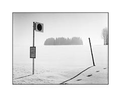Bus stop (cardijo) Tags: oesterreich austria salzburg landscape landschaft winter snow schnee analog film kodak trix rodinal bronica zenzanon etrsi blackandwhite bw schwarzweis sw nikon coolscan