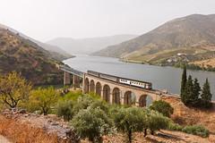 IR876 | Freixo de Numão (Nohab0100) Tags: rio train river ir railway viaduct douro cp comboio viaduto automotora dmu 0600 freixodenumão sorefame