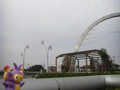 Ambipom in Kasukabe, Saitama 9 (Kasadera) Tags: toys figure pokemon pokmon  kasukabe   pokemonkids  ambipom     ambidiffel capidextre
