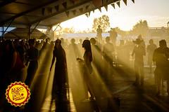 Party People @ Afro-Latino Festival 2015. (www.afro-latino.be) Tags: party summer people music sun field festival fun al concert belgium belgique outdoor live afro belgi zomer muziek luc latino bree zon limburg afrolatino belgien blgica sfeer 2015 hollevoet photobyhollevoetluc beerselerdijk