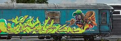 speek,,bear,,tck,eds,mostoles city,,madrid (speekone tck. eds) Tags: