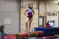 DSC_0072 (davids_studio) Tags: fun bars flip gymnastics handstand split gym parallel backflip gymnasts