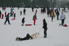 Winter (Natali Antonovich) Tags: portrait winter lahulpe belgium belgique belgie snow frost lifestyle tradition relaxation sled sleding sledging friends family
