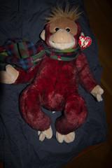 IMG_7409 (armadil) Tags: freecycle stuffedtoy toy monkey scarf