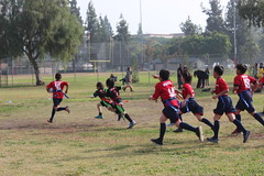2016-12-10 12.53.01 (PlayRugbyUSA) Tags: action running attacking boys