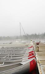 Colter Bay Marina, Tetons, Fog (Samtian) Tags: grandtetonnationalparkwy