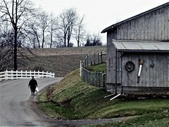 country walker (Lana Pahl / Country Star Images) Tags: intheneighborhood amishcountry ohioamish