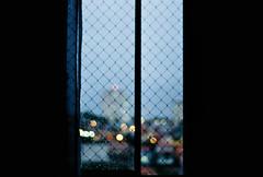 .deserve your dream. (Camila Guerreiro) Tags: film expiredfilm kodak pentaxmesuper camilaguerreiro window 35mm expired kodakgold200 são paulo brazil analog grain