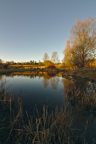Wootton Pond