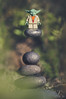 Yoda & The Cairn (little ju !) Tags: yoda cairn force training rock levitation