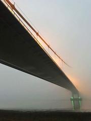 Fog Highway (Mootman) Tags: bridge lincolnshire fog humberbridge