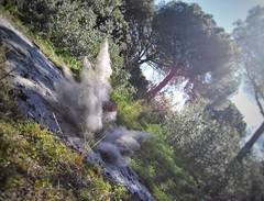 Ash explosion (alvaroalex_333) Tags: ash ceniza nube cloud tronco arboles arbol tree trees hierba explosión explosion catastrofe catastrophe foto photo picture nikon nikondslr nikond3300 d3300nikon sol sun soleado sunny día day díasoleado sunnyday