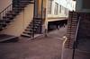 Midtown, Sacramento, CA (easy.beta) Tags: 100asa 2016 35mm c41 california colornegative contaxt2 kodak kodakektar100 november sacramento analog autumn centralvalley fall film