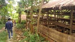 P_20160812_132100 (kasemarang) Tags: arsitektur komunitas semarang architecture community kambing ayam kandang village desa study field goat chicken