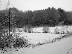 Winterlandschaft am See... (fotofaninge) Tags: winter am see