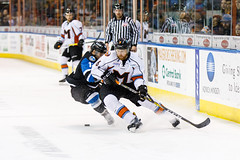 "Missouri Mavericks vs. Wichita Thunder, January 7, 2017, Silverstein Eye Centers Arena, Independence, Missouri.  Photo: John Howe / Howe Creative Photography • <a style=""font-size:0.8em;"" href=""http://www.flickr.com/photos/134016632@N02/32210094256/"" target=""_blank"">View on Flickr</a>"